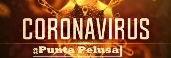 coronavirus puntapelusa