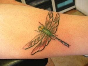 insect tattoo