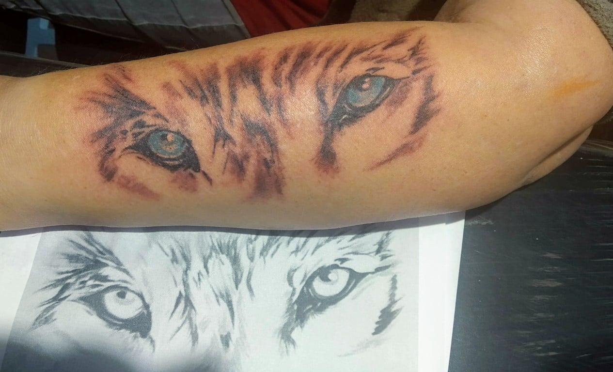 Tatuaje foto ojo lobo Pelusa Tatuajes crevillente