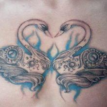 Zwaan hart tattoo